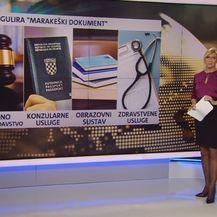 Videozid o tzv. Marakeškom sporazumu (Foto: Dnevnik.hr) - 2