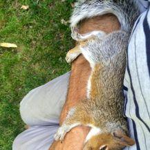 Ljudi i životinje (Foto: thechive.com) - 18