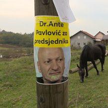 Ante Pavlović (Foto: Dnevnik.hr) - 1