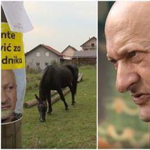 Ante Pavlović (Foto: Dnevnik.hr)
