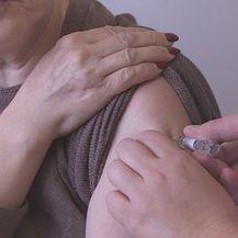 Cijepljenje (Foto: Dnevnik.hr) - 1
