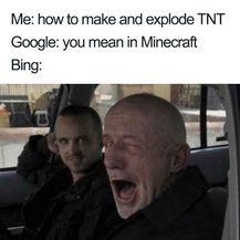 Bing i Google (Foto: boredpanda.com) - 14
