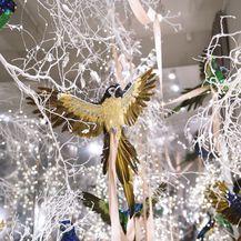 Saša Šekoranja i ove godine uredio je izlog svog cvjetnog atelijera u božićnom duhu