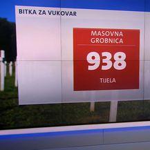 Stradali u Vukovaru u brojkama - 5