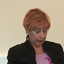 Izricanje presude Tomislavu Horvatinčiću (Video: Dnevnik.hr)