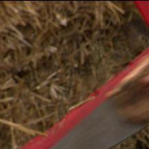 Ivan Mrkoci prvi je farmer koji je u ovogodišnjoj sezoni Farmu napustio na vlastitu inicijativu (Video: IN Magazin)