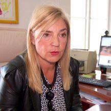 Školski domar 20 godina zlostavlja djevojčice i još uvijek radi u školi (Foto: Dnevnik.hr) - 5