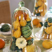 Ideje za dekoriranje doma s kraljicom jeseni bundevom - 2