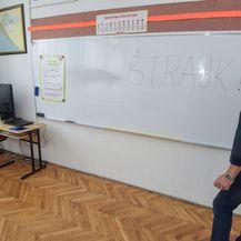 Štrajk učitelja i profesora u osnovnim i srednjim školama (Foto: Dino Stanin/PIXSELL)