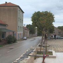 Općina Promina (Foto: Dnevnik.hr) - 4