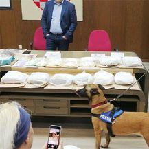 Zapljena droge istarske policije (Foto: PU istarska) - 2
