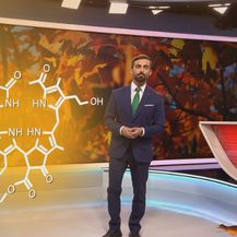Darijo Brzoja o razlozima zbog kojih lišće mijenja boju (Foto: Dnevnik.hr) - 4