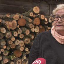 Goranka Vuić (Foto: Dnevnik.hr)