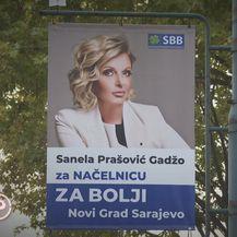 Teške zlouporabe osobnih podataka, glasanje na izborima u BiH - 4