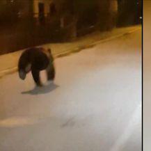 Medo u Gospiću (Video: Dnevnik Nove TV)