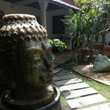 Slađana na Baliju - 53