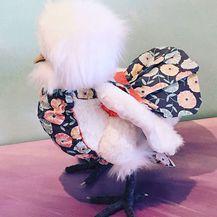 Pelene za kokoši (Foto: Facebook/PamperYourPoultry) - 19