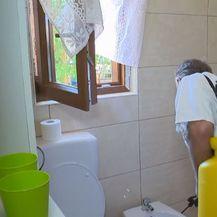 Tvrtke za dezinfekciju uklanjanju žohare (Foto: Dnevnik.hr)