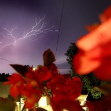 Munje u Istri, ilustracija (Foto: Borna Filic/PIXSELL)