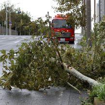 Tajfun pogodio Japan (Foto: AFP) - 1