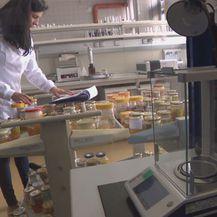 Laboratorij za kontrolu kvalitete meda (Foto: Dnevnik.hr)