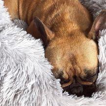 Krevetić za pse koji smiruje ljubimca - 5