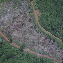 Spaljivanje Amazonske prašume (Foto: Dnevnik.hr) - 1