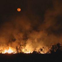 Spaljivanje Amazonske prašume (Foto: Dnevnik.hr) - 3