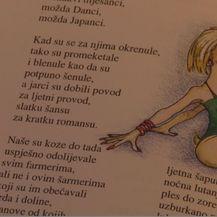 Isječak iz knjige (Foto: Dnevnik.hr)