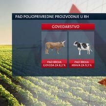 Pad stočarstva u Hrvatskoj