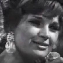 Silvana Armenulić