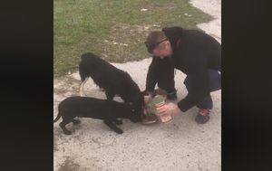 Mirko Filipović i psi koje je našao (Foto: screenshot Facebook)