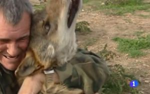 Čovjek kojeg su odgojili vukovi razočaran životom među ljudima (Screenshot YouTube)