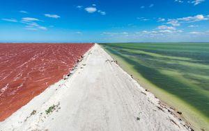 Ružičasto more, Meksiko - 1