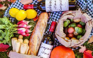 Mali piknik na Vranicanijevoj - 1