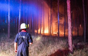 Požari u Njemačkoj (Foto: AFP)