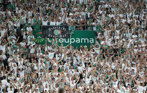 Groupama Arena u Budimpešti (Foto: Slavko Midzor/PIXSELL)