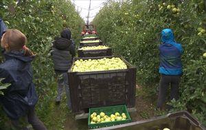 U lancu proizvodnje hrane nešto ne štima (Foto: Dnevnik.hr) - 2