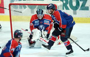 Hokejaši Medveščaka (Foto: Goran Stanzl/PIXSELL)