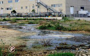 Stanovnici Putičanja zabrinuti su zbog otrova iz obližnje tvornice (Foto: Dnevnik.hr) - 3