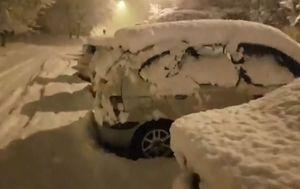 Snijeg u Istri (Foto: Dnevnik.hr) - 4