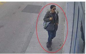 Traži se žena sa fotografije (Foto: PU istarska)