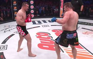 Cro Cop i Roy Nelson (Screenshot)