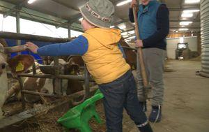Djeca pomažu u čišćenju štale (Foto: Dnevnik.hr) - 2