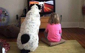 Najbolji prijatelji (Foto: izismile.com)