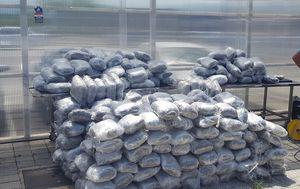 Splitska policija zaplijenila više od 400 kilograma marihuane (Foto: Mario Jurič)