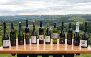 Nagrađena vina