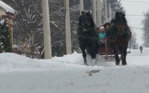 Snježna bajka iz Baranje (Foto: Dnevnik.hr) - 1