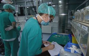 Liječnici ne odustaju od isplate prekovremenih (Foto: Dnevnik.hr)