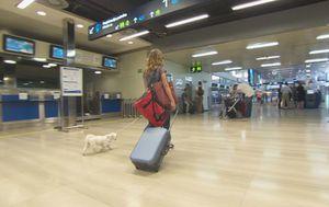 Više od četvrtine mladih spremno otići u Europu (Foto: Dnevnik.hr) - 3